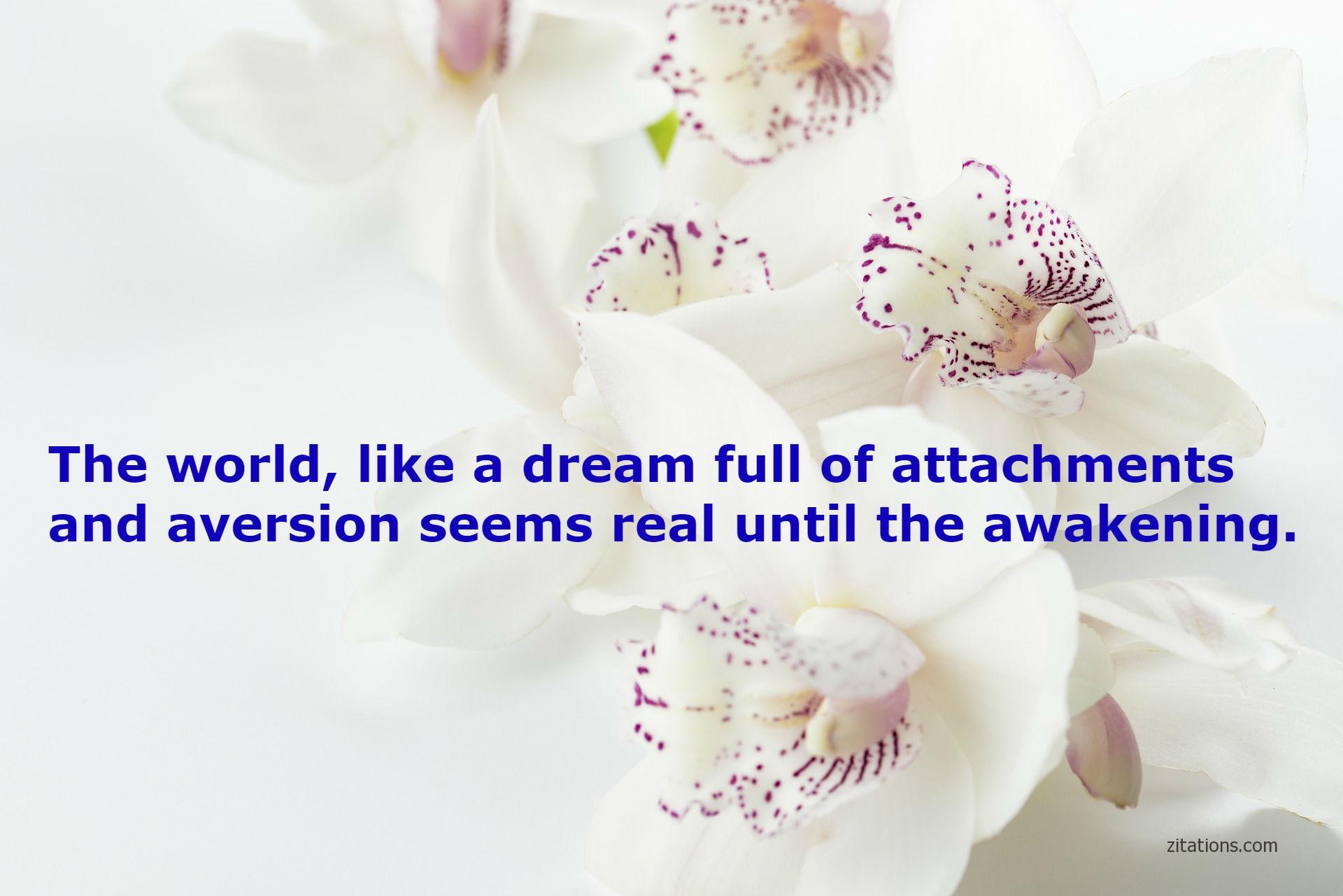 quotes of shankaracharya