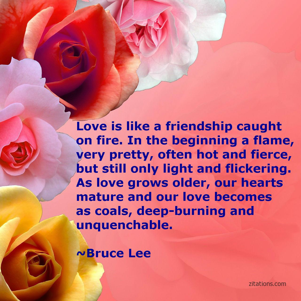 twin-flame-quotes_4