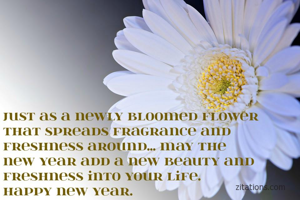 New year wishes - 3