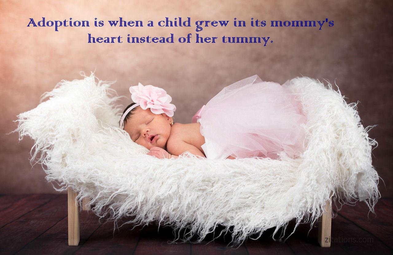 adoption quote - 7