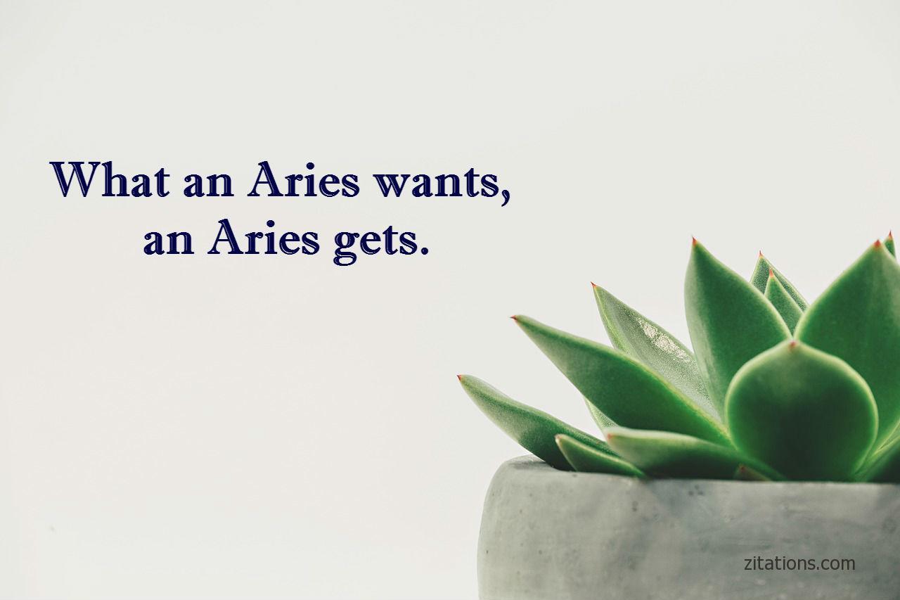 aries quotes - 2
