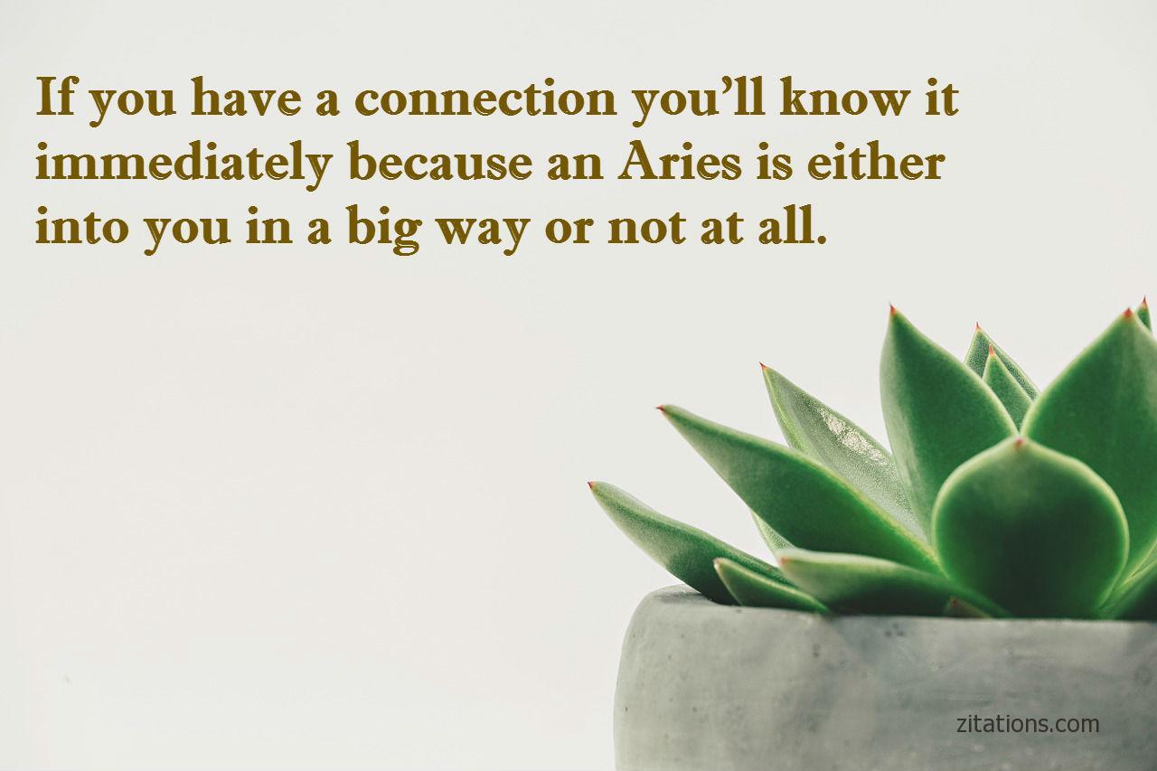 aries quotes - 5