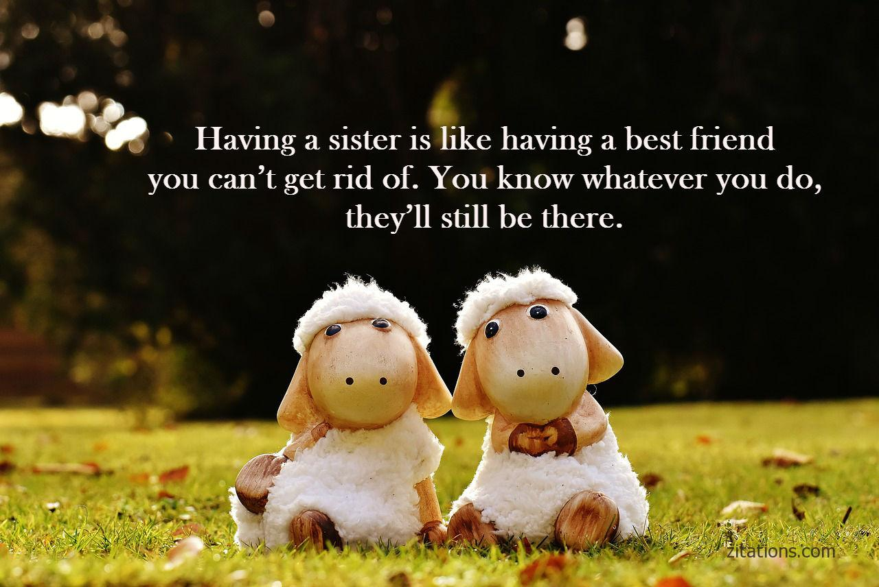 funny sister quotes 1
