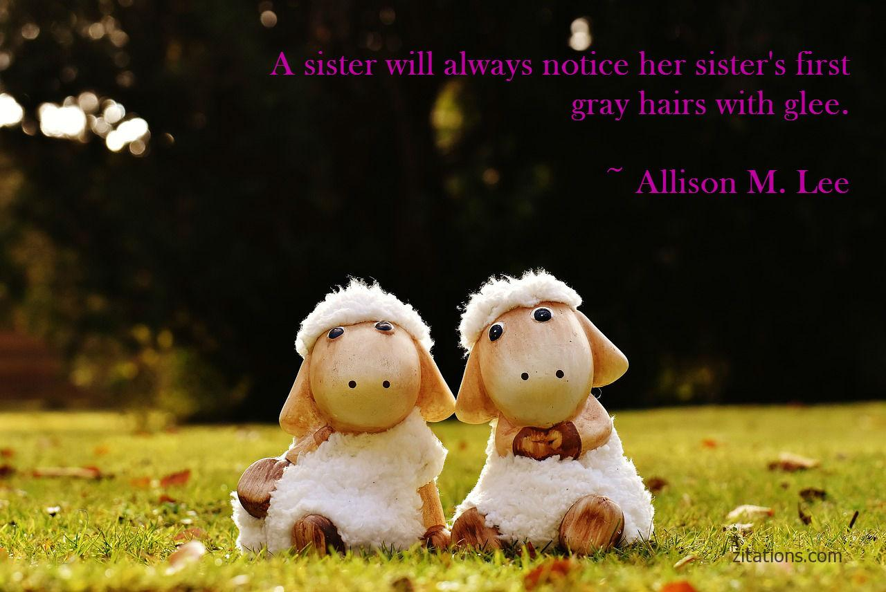 funny sister quotes 4