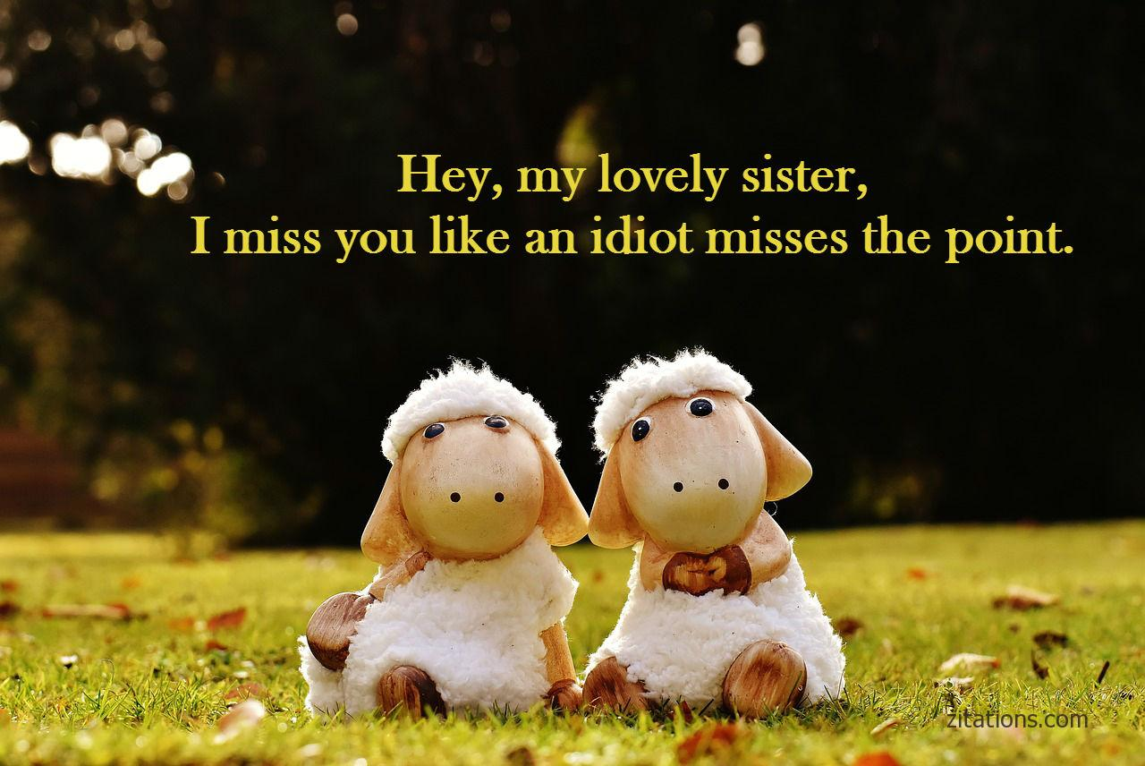 funny sister quotes 9