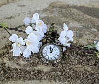pocket-watch-1637392_640
